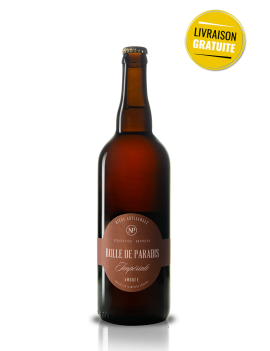 bière ambrée artisanale